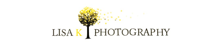Lisa K Photography Blog logo